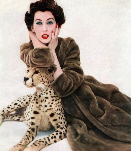 A photograph of model Dovima from 1955