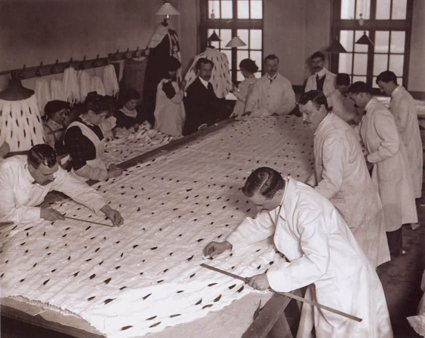 Making George V's coronation robe (Tailors working on the ermine coronation robes for the king and his queen)