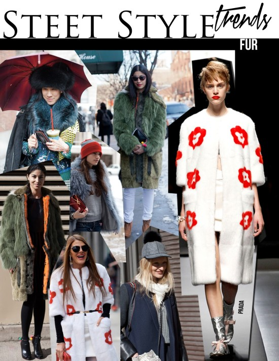 Street Style Trends | Animal Rights Goes Wrong | Things That Make You Go Hmmm…