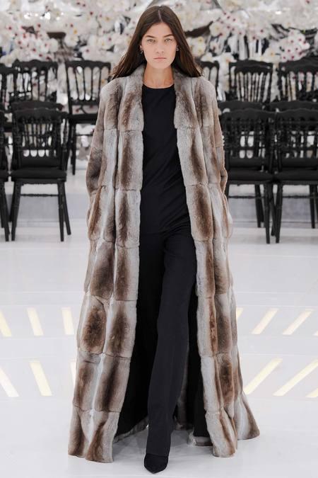 Christian Dior - Haute Couture Fall 2014-Winter 2015