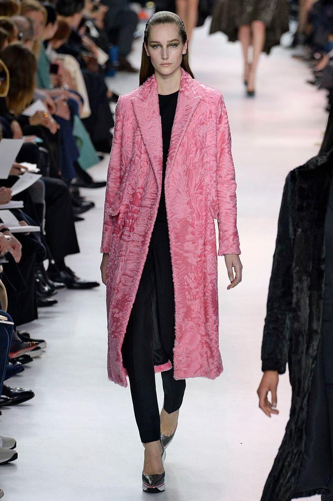Christian Dior - Fall 2014-Winter 2015