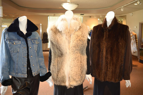 Pictured are five examples of Alaskan Fur Company styles that can be made from your old fur. Our expert restyling staff can make your new fur into many fashionable styles. From left to right- (1) Turn your old mink into a darling new style, this mink stroller was made from a 25 year old mink coat (2) Mink zipper vest, can be made from a mink jacket, stroller or coat. (3) Trim your old jean jacket with a fur collar and cuffs. You can make them permanent or detachable, whichever you like. (4) This vest is made from an old coyote coat. We can take your old fur and make it into a new fun vest style that looks brand new. (5) Restyle the fur into a nice jacket with detachable ultra suede sleeves. We have many shades of suede to choose from to match your fur. These are just a few samples of the different styles we can create for you.