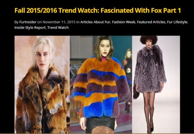 Fall 2015-2016 fox trends part 1