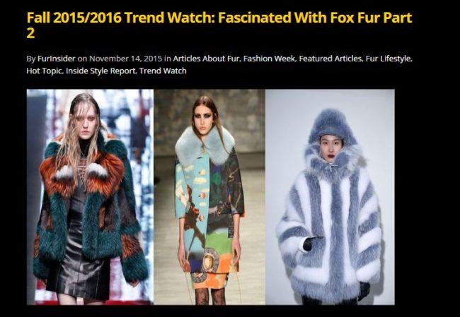 Fall 2015-2016 fox trends part 2