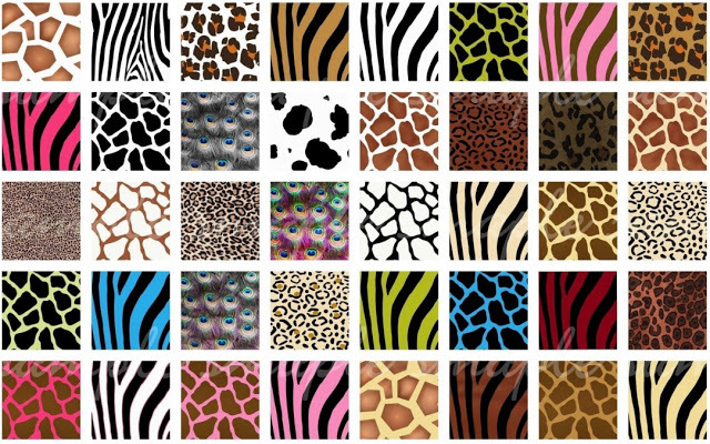 variations in animal prints