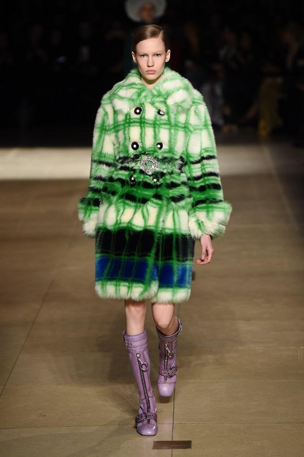 Miu Miu PARIS Fashion Week Fall 2017
