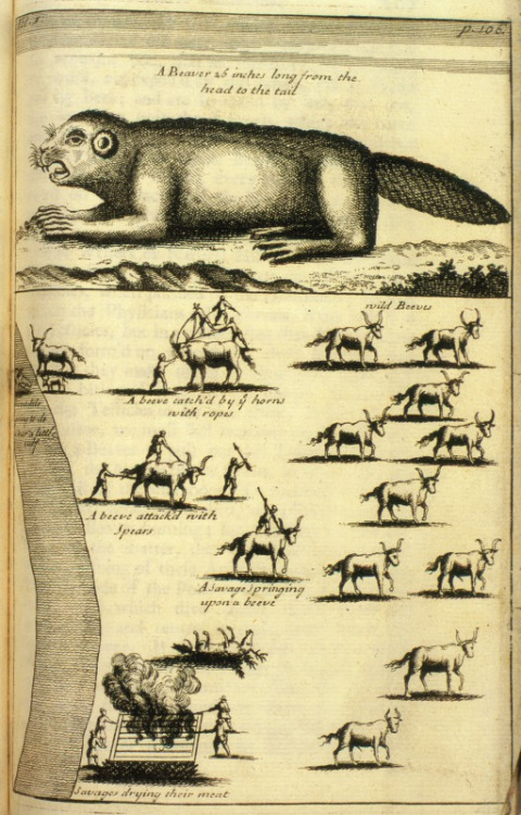 4th of July history of fur trade