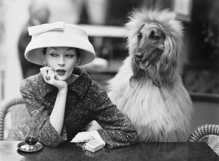 fashion history balenciaga and model dovima
