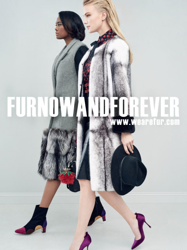 "The third final phase of the FurNow campaign, is ""American Woman"" theme"