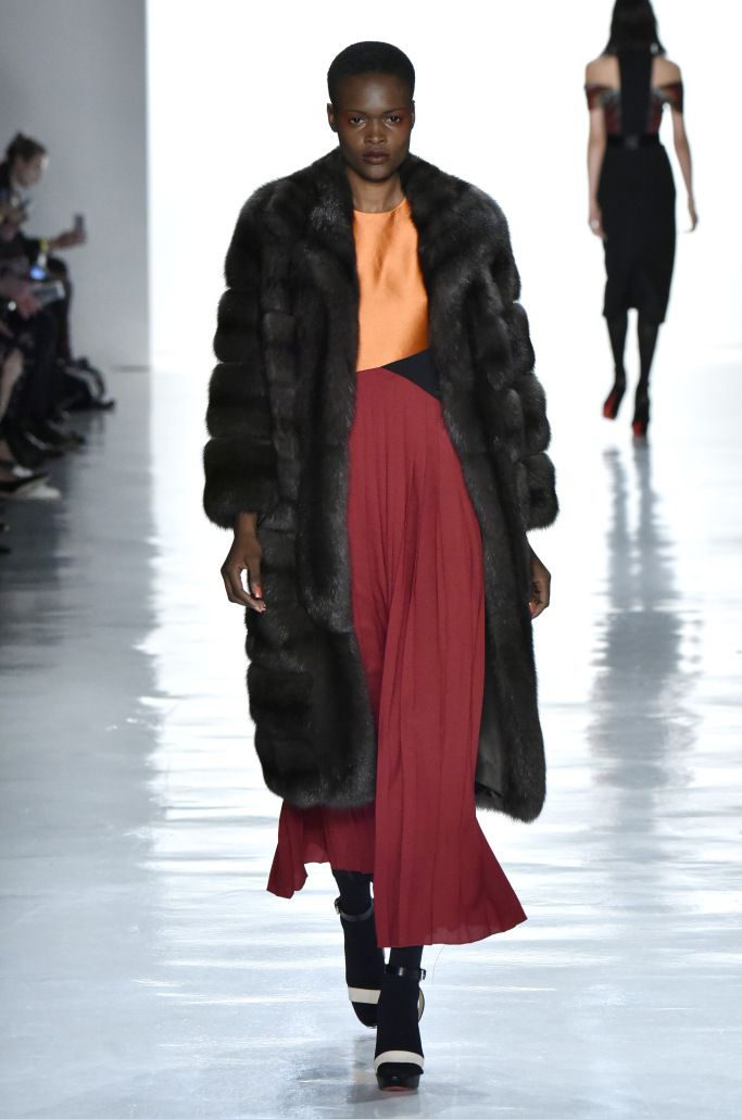 Bibhu Mohapatra RTW Fall 2017- UPTOWN SOPHISTICATE Arctic Blast