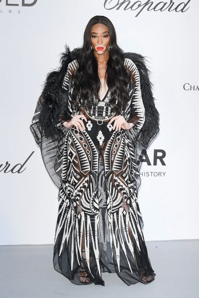 Winnie Harlow attended the amfAR Gala Dinner at the 2018 Cannes Film Festival